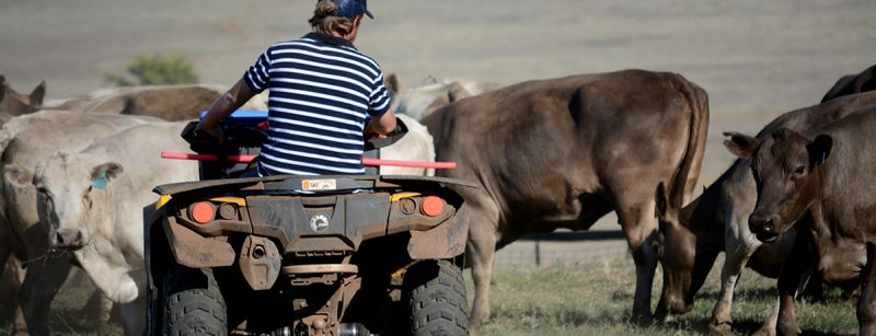 6 Uses for ATVs & UTVs on the Farm or Ranch